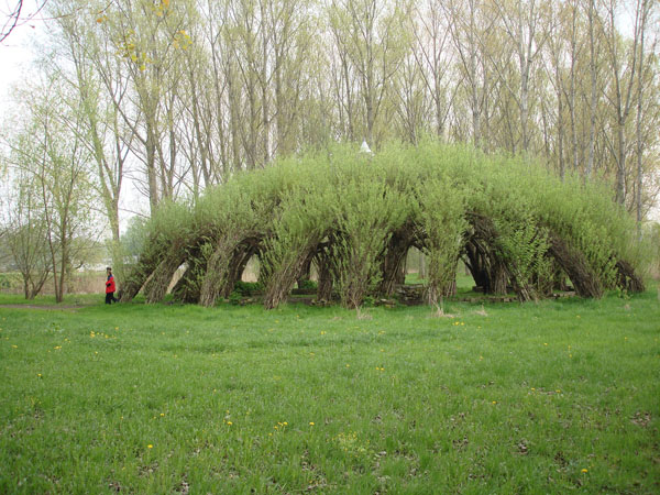 Living Willow Architecture Something To Share